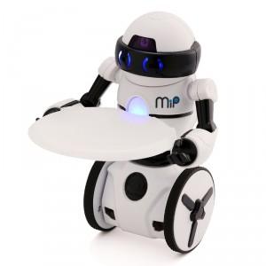 robot-mip