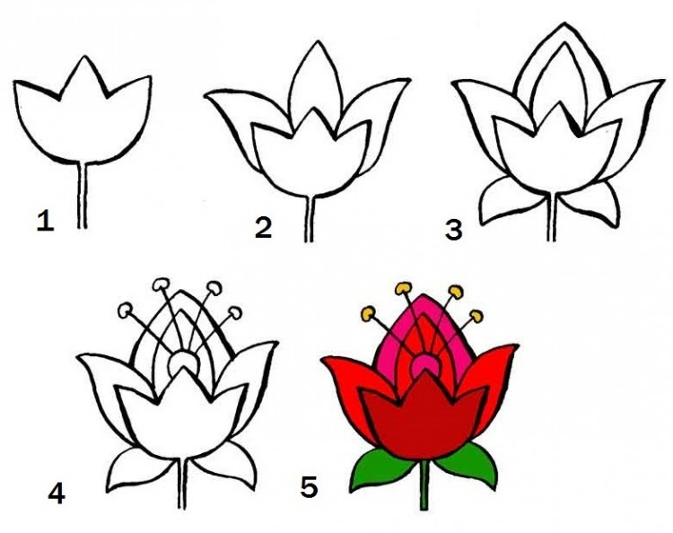 Как нарисовать цветы поэтапно