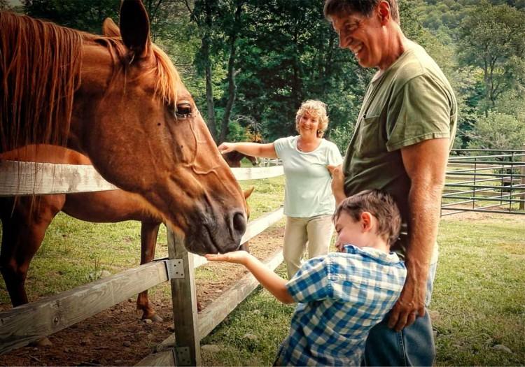 Мальчик и лошадь