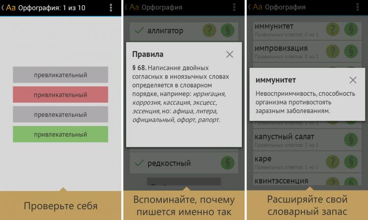 Орфография русского языка